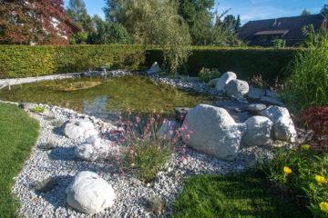 eau et minéral bassin naturel avec poissons et petite cascade