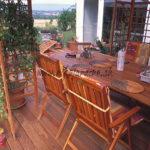 plantes grimpantes sur tonnelle en bois exotique avec terrasse et mobilier